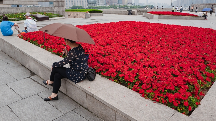 flower beds along The Bund